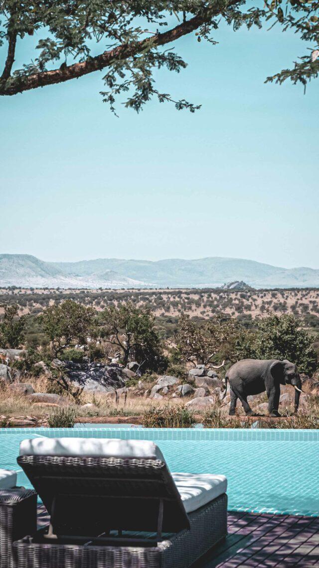 Four Seasons Safari Lodge Serengeti Hotels in Heaven