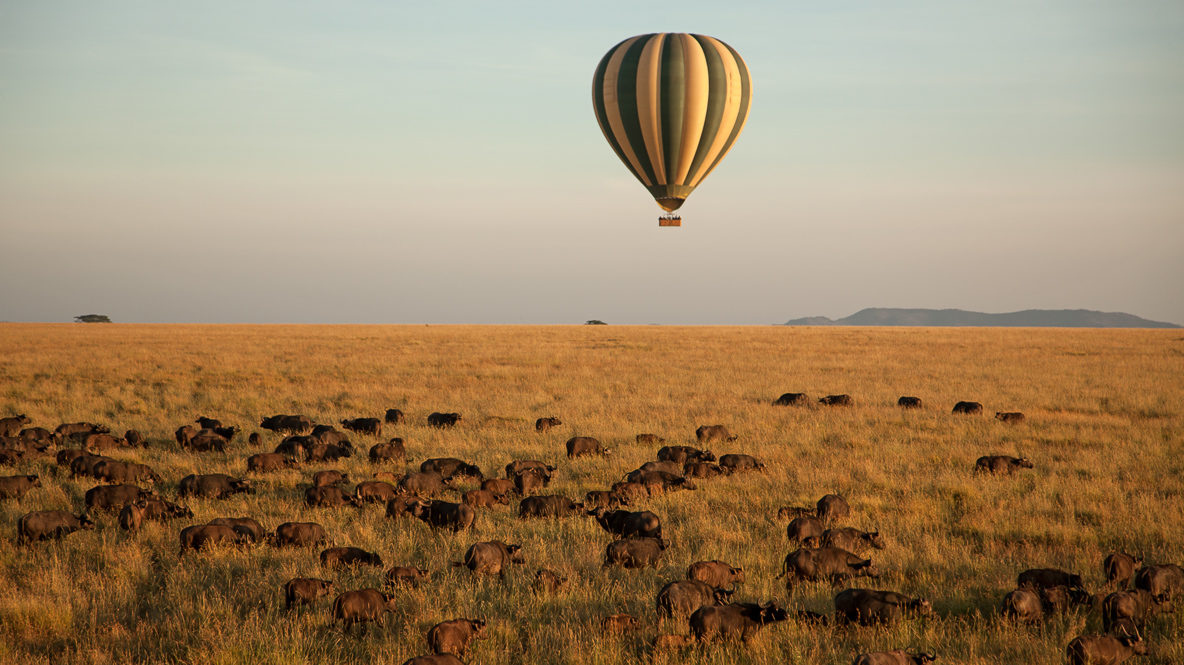 hotels in heaven four seasons safari lodge serengeti outdoor hot air balloon wild animals veld blue sky colorful