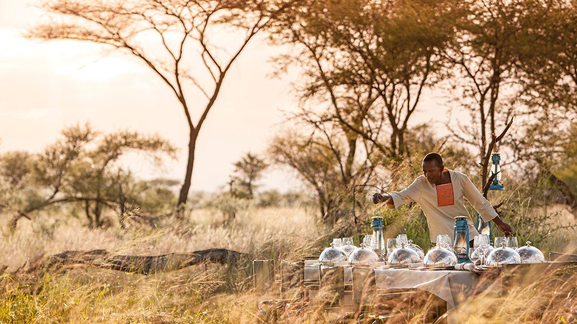 hotels in heaven four seasons safari lodge serengeti culinary man savannah trees bushes grass food outback dinner