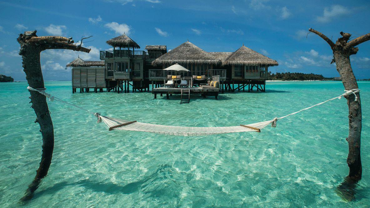 hammock over ocean-gili lankanfushi maldives