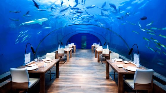 hotels in heaven conrad maldives rangali culinary under water restaurant sharks swimming blue knives napkins