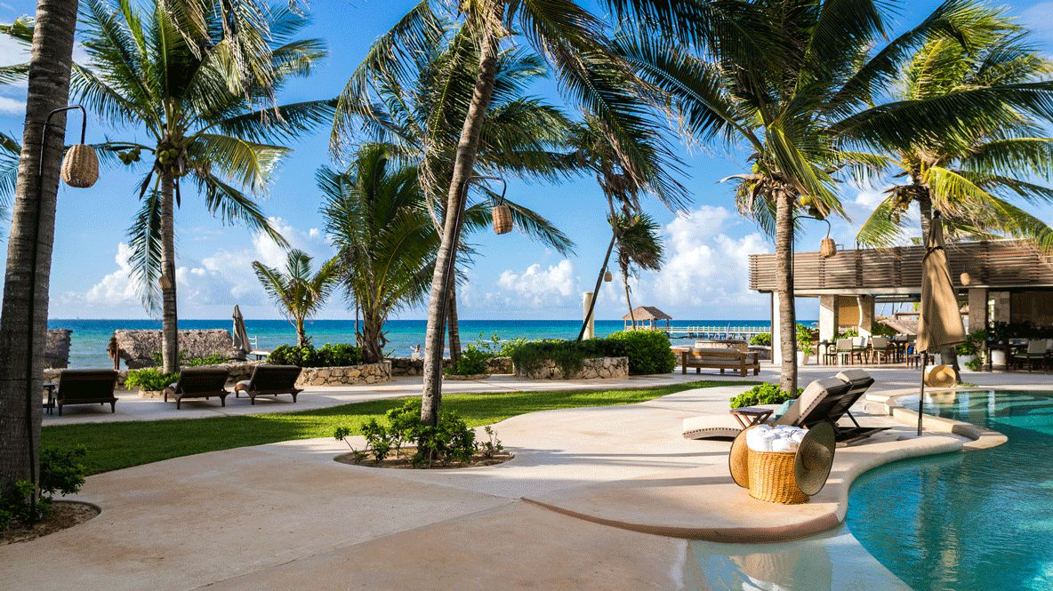 hotels in heaven viceroy riviera maya pool ocean view culinary pool palm tree luxury view ocean towel deckchair plants
