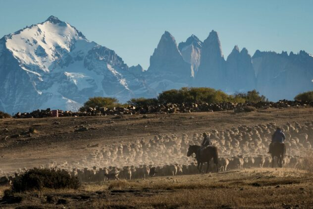 wilderness-tierra patagonia chile