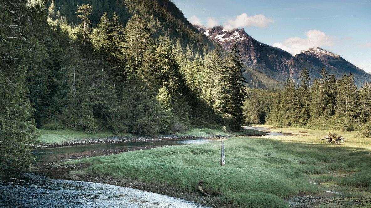 wilderness-clayoquot wilderness resort canada