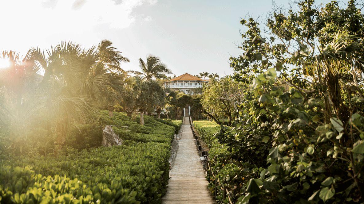 Hi 055026_93608849 Verandah building and surrounding garden way house plants sunny nature green sky hotels in heaven luxury