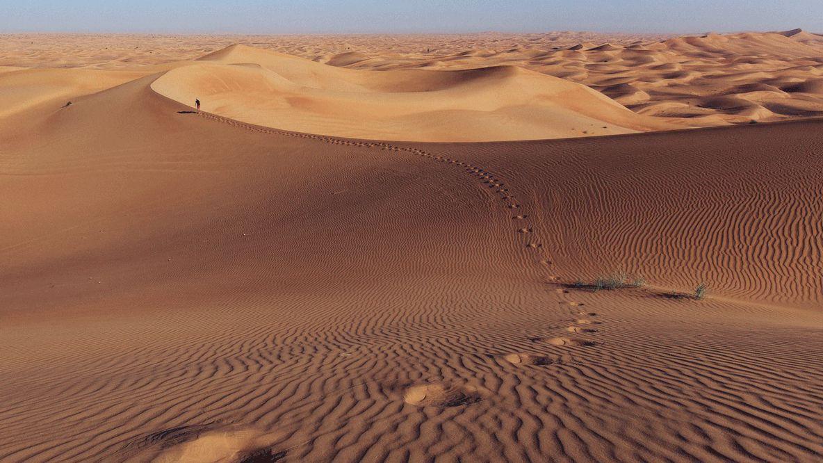 desert location-al maha desert resort uae