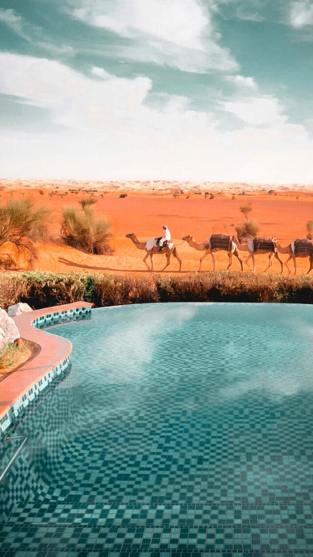 infinity pool desert-al maha desert resort uae