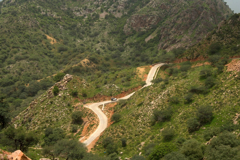 road-alila fort bishangarh india