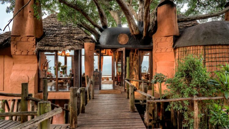 hotels in heaven andBeyond Ngorongoro Crater Lodge accommodation tree candle lamp bridge plants table vase flower view