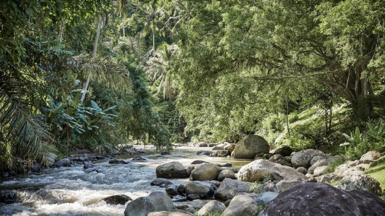 four-seasons-resort-bali-at-sayan-river