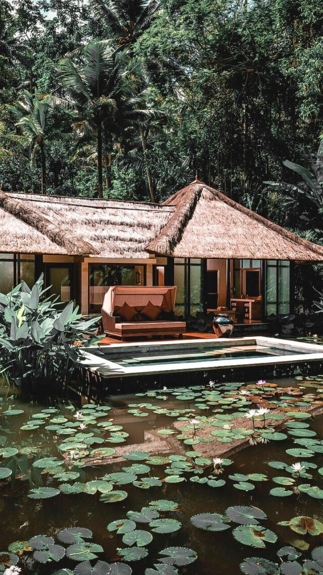 spa rainforest-four seasons resort bali at sayan