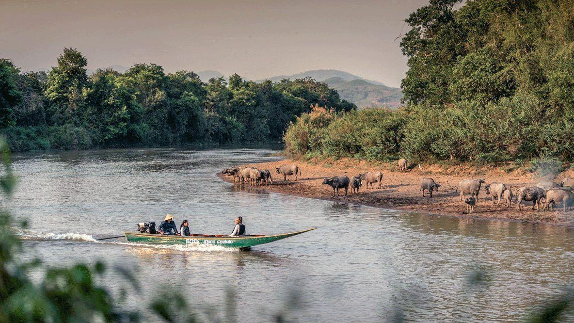 ruak river-four seasons tented camp golden triangle thailand