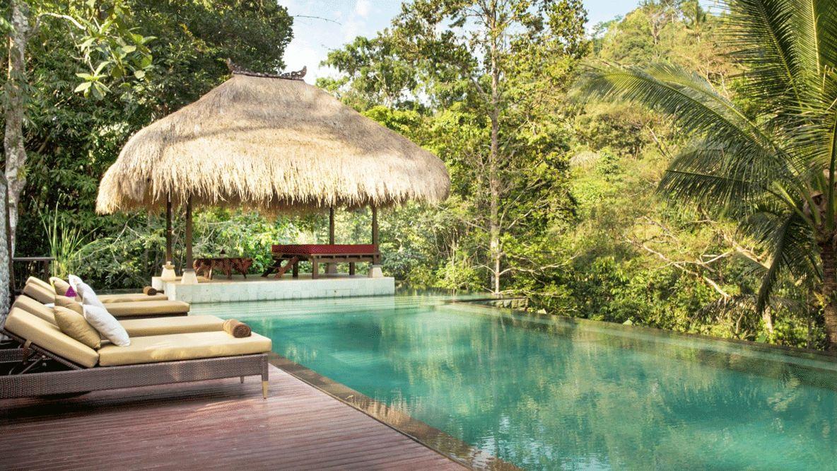 infinity pool jungle-The Hanging Gardens of Bali