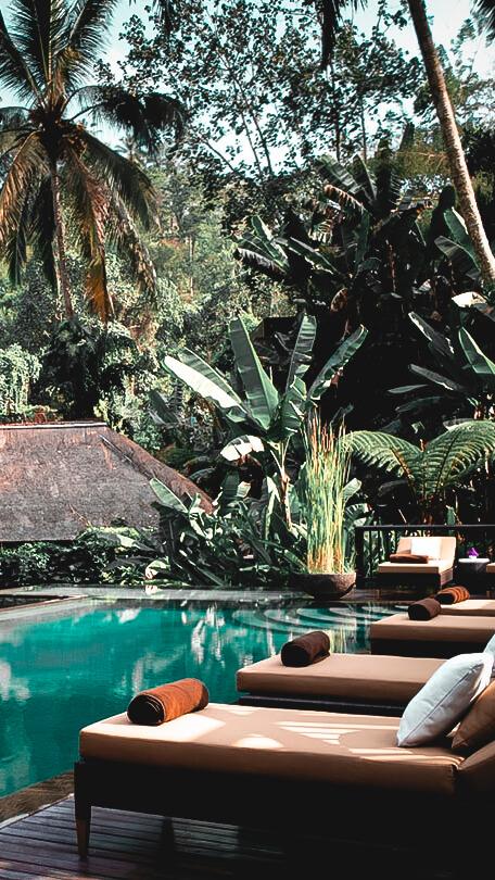 infinity pool-hanging garden of bali