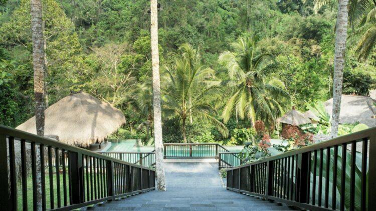 walkway jungle-hanging garden of bali