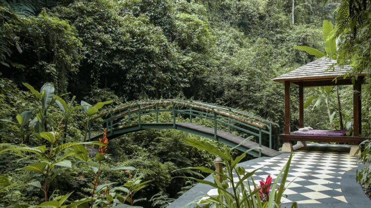 hotels in heaven hanging gardens bali location accommodation forest luxury bridge nature tree plants bed pillow outside secret paradise green jungle
