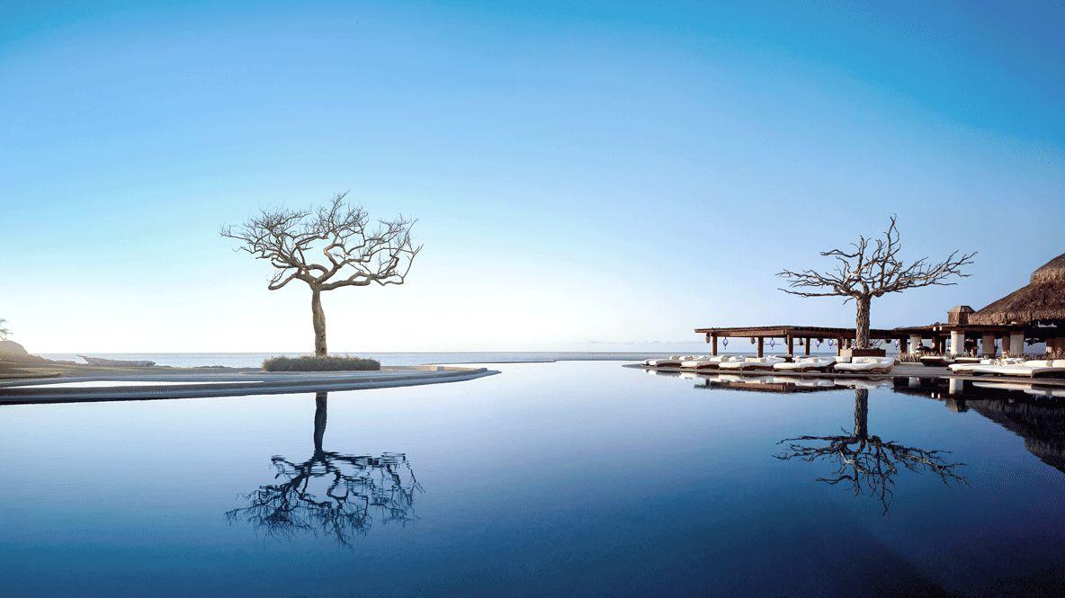 hotels in heaven las ventanas al paraiso pool tree reflect deckchair sea view beautiful blue