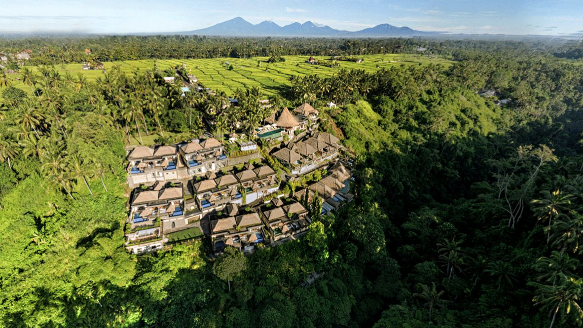 hotels in heaven viceroy bali location accommodation rain forest Kopie palm trees green nature tropical houses beautiful sun sky mountain view