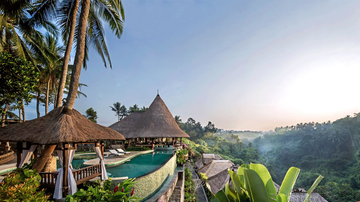 hotels in heaven viceroy bali view rain forest accommodation location infinity pool jungle luxury palm trees comfortable plants flower deckchair