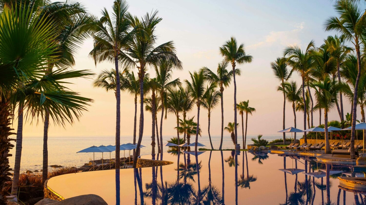 infinity pool-one&only palmilla los cabos