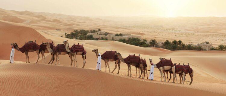 camel tour-qasr al sarab uae