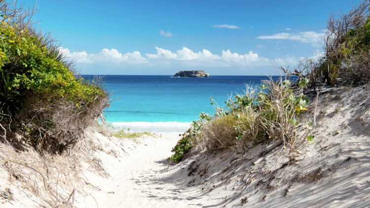 hotels in heaven villa marie saint barth location view ocean sand plants view clearly water beach sunny blue sky
