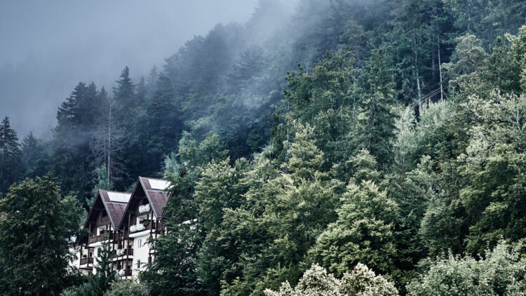 hotels in heaven miramonti boutique location forest natural outdoors beautiful hidden lonely place retreat