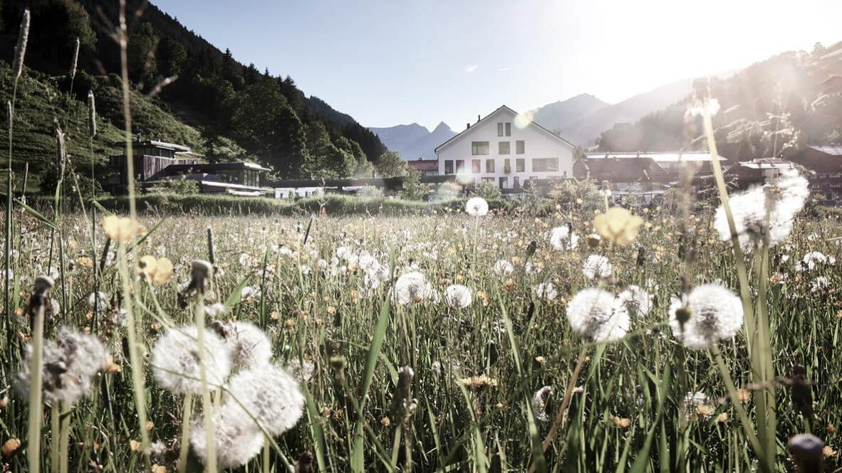 nature hotel alps-wiesergut austria