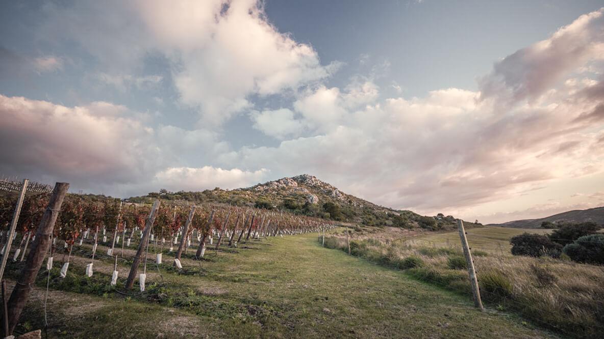 hotels in heaven sacromonte location nature vineyard grass green cloudy sky beautiful rustic nice walking hiking