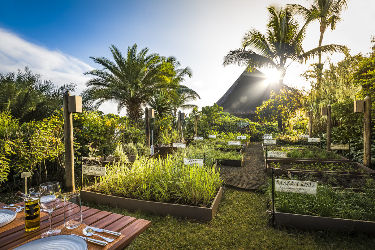 herb trail cuisine-the oberoi beach resort mauritius