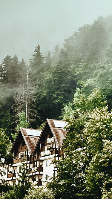 forest surrounded hotel alps-miramonti italy