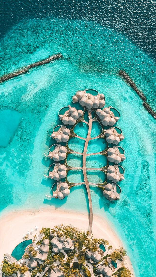 ocean villas-the nautilus maldives
