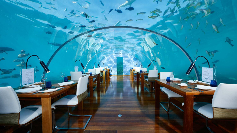 undersea restaurant-conrad maldives