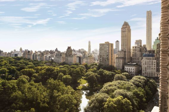central park-ritz-carlton new york city