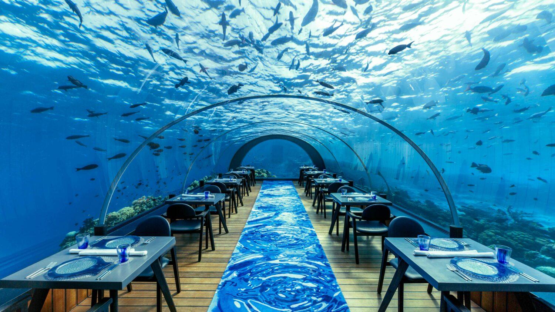 underwater restaurant-hurawalhi island resort maldives