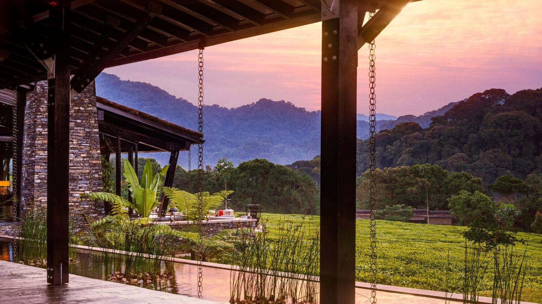 garden view-one&only nyungwe house rwanda