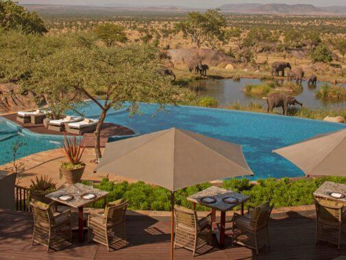 pool area elephants-four seasons safari lodge serengeti