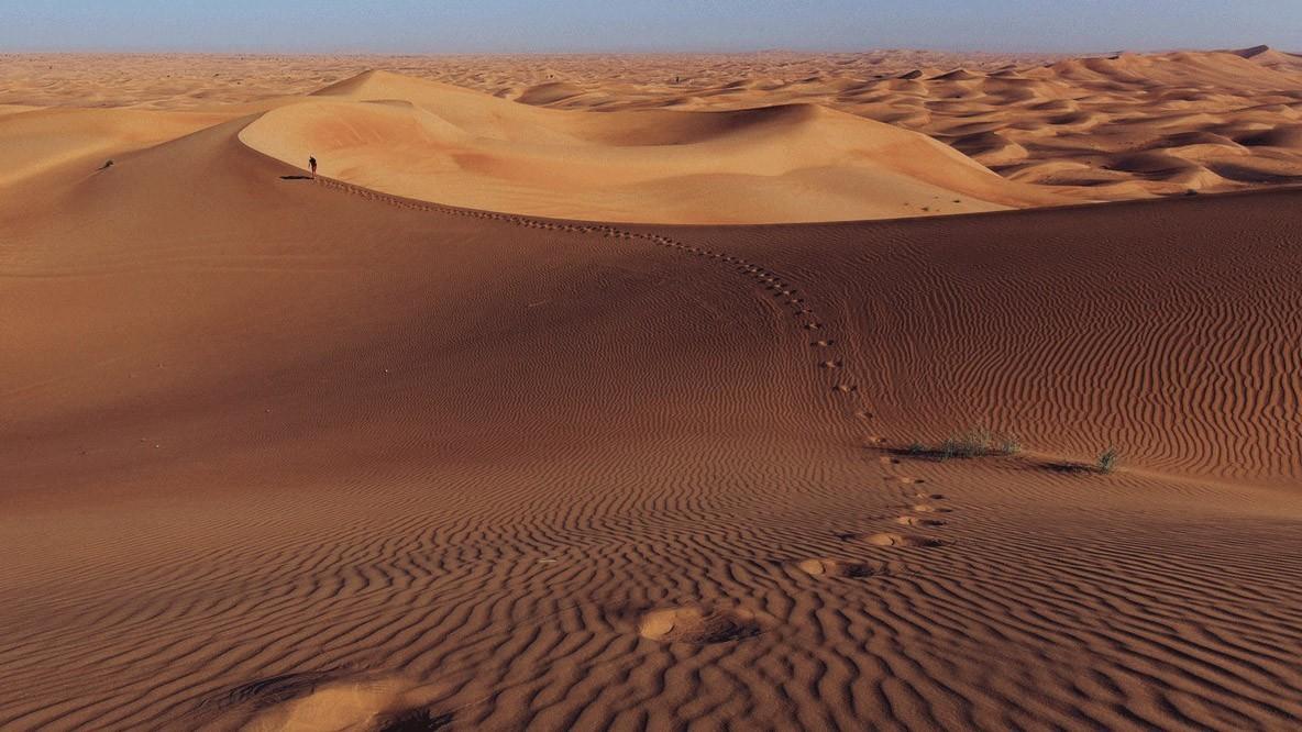 al maha desert resort spa-desert-activity