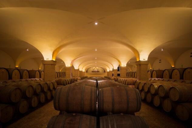 rosewood-castiglion-del-bosco-aging-cellar