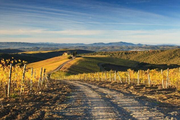 rosewood-castiglion-del-bosco-location-landscape