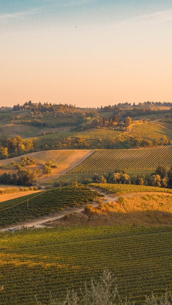 landscape-tuscany-unspalsh