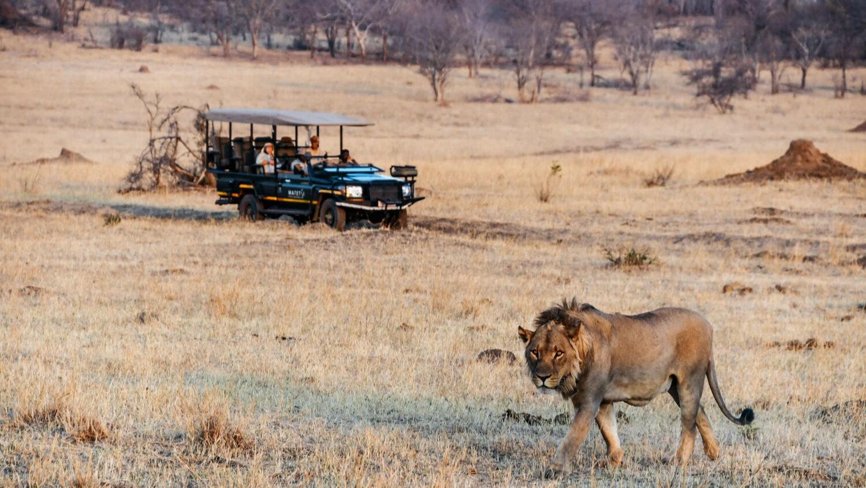 matetsi-victoria-falls-safari-tour