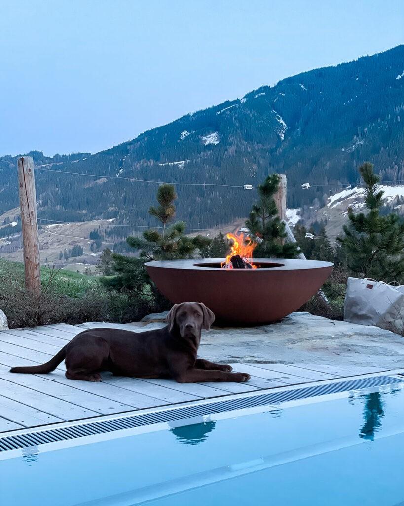 senhoog-leogang-outside-fireplace-dog