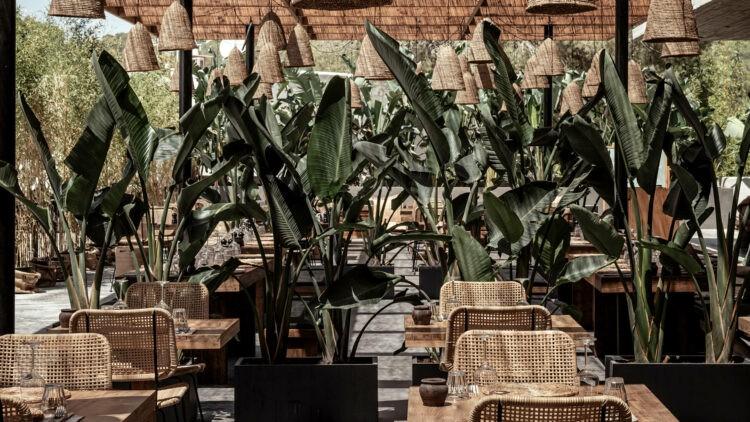 oku_ibiza_restaurant_view