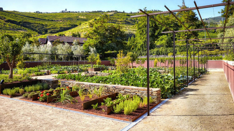 Six_Senses_Douro_Valley-Organic_garden