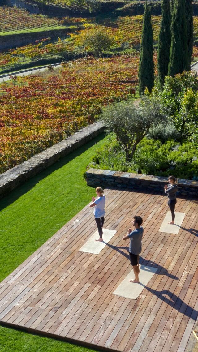 Six_Senses_Douro_Valley-Vineyard_Yoga_mobile