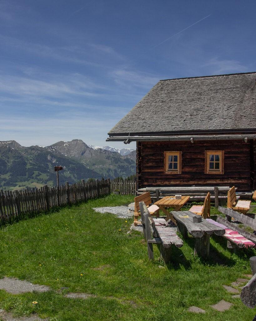 das_edelweiss_salzburg_mountain_resort_alm